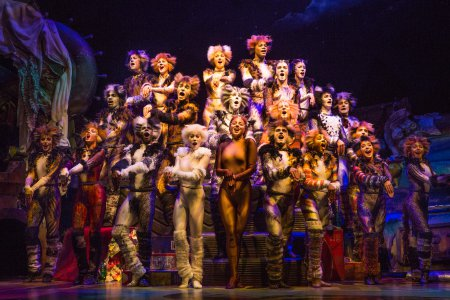 "The Company of ""Cats"" (Photo credit: Matthew Murphy)"