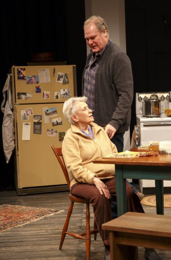 """Roberta Maxwell and Jay O. Sanders in Richard Nelson's """"Women of a Certain Age, Play 3 of """"The Gabriels: Election Year in the Life of One Family"""" (Photo credit: Joan Marcus)"""